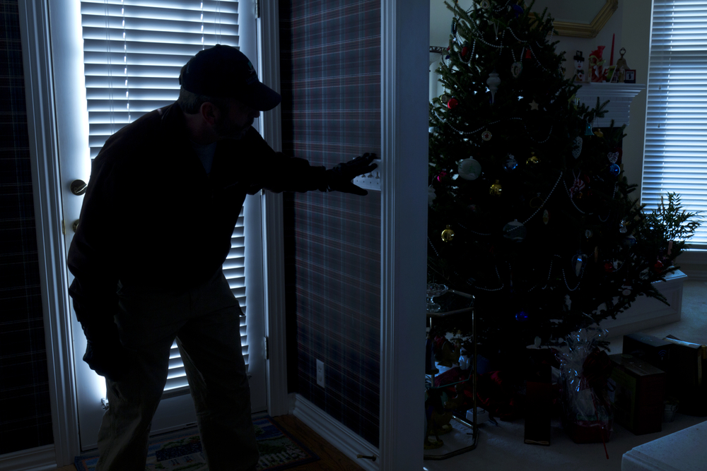 Home Security This Christmas